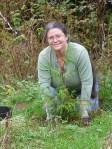 Katrina planting cedar tree