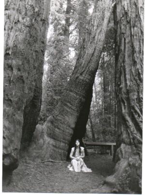 Katrina-Redwoods_78